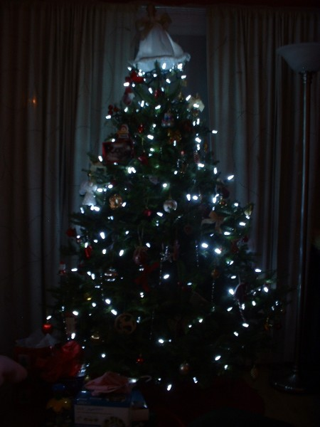 """Noma """"white"""" LED Christmas lights on our indoor Christmas tree"""